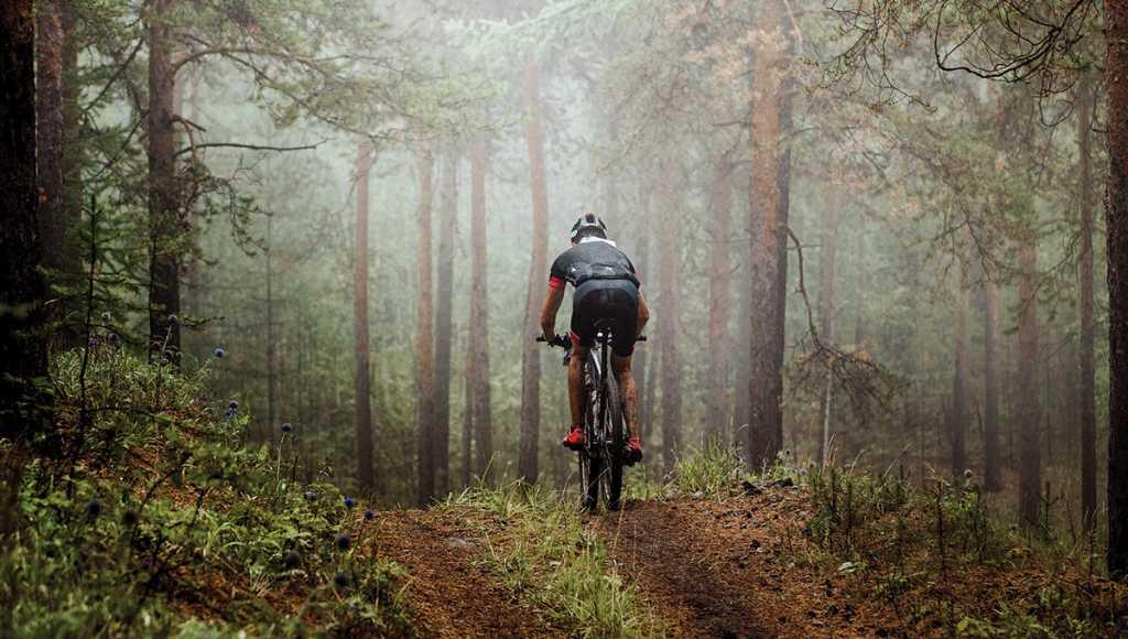 Rainforest Trail Bike & Hike Adventure