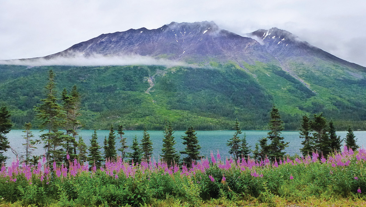 Skagway Day Tour Yukon Sightseeing By Hummer Alaska Travel Adventures